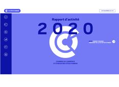 rapport_activite_2020_visuel_site